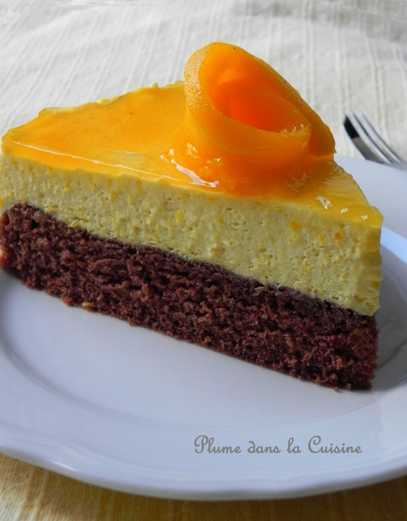 Gateau pulpe de mangue