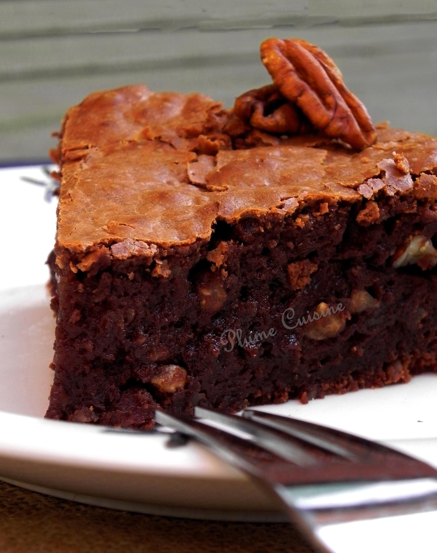Gateau Moelleux Au Chocolat Et Aux Noix Une Plume Dans La Cuisine