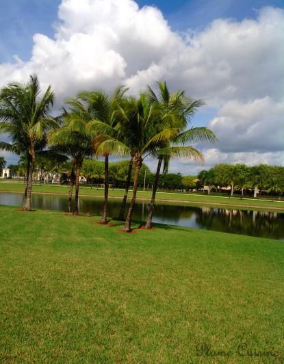 west palm